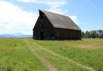 Barn in the meadow at the edge of town