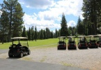 Golf carts ready to go